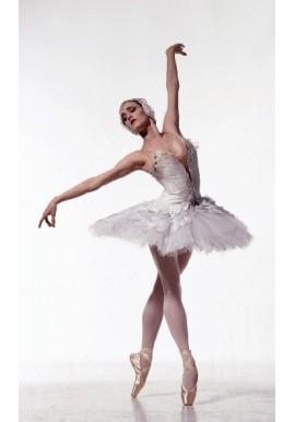 Calzado Ballet